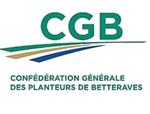 CGB-ICO